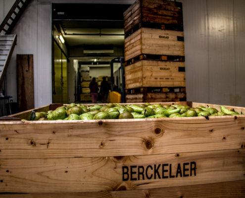 Fruitbedrijf Berckelaer